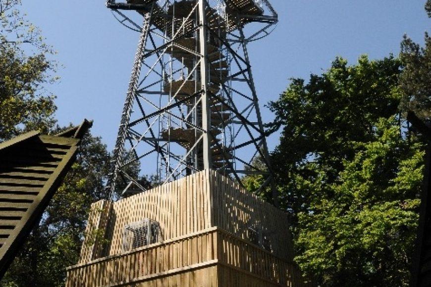Góra Rowokół w Smołdzinie – poznaj naszą okolicę!